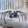 Massive Black Spider Skeleton