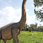 Massive Brachiosaurus Dinosaur Statue