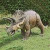 Massive Triceratops Dinosaur Statue