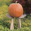 Mummy Hands Pumpkin Holder