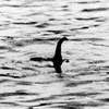 Nessie the Loch Ness Soup Ladle