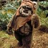 Original Wicket Ewok Fur Prop from Star Wars: Return of the Jedi
