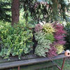 Outdoor Living Wall Planters