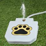 Paw-Activated Dog Water Fountain