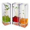 Plantarium - Space-Age Plant Greenhouse