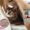 Ripple Rug - Interactive Cat Activity Mat