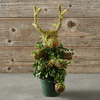 Rudolph the Red-Nosed Reindeer Topiary