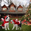 Santa Riding a Dog Costume