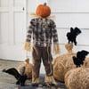 Scarecrow Pumpkin Stand