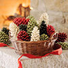 Scented Wax Pine Cone Fire Starters