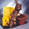 Shiitake Mushroom Log Kit - Grow Your Own!