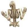 Sinister Climbing Skeleton Wall Sculpture