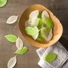 Soap Leaves