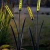 Solar Cattail Garden Stake