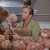 Star Trek Interactive Tribbles