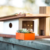 Sunset Modern - Modernist Birdhouse