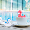 Swan Pool Float Tea Infuser