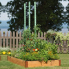 Tomato Watering Stakes
