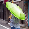 Vegetabrella - Lettuce Leaf Umbrella