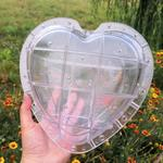 Watermelon Shaping Molds - Square or Heart Shapes