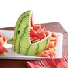 Watermelon Shark Serving Bowl