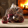 Wax-Bottom Pine Cone Fire Starters