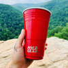 WYLD Cup - Reusable Stainless Steel Party Cup
