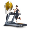 Zone Dome Treadmill Projector