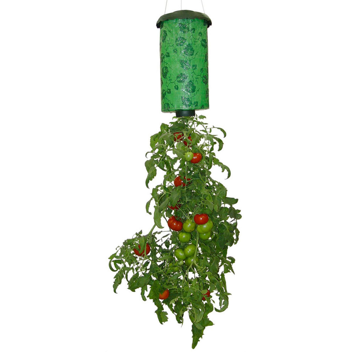 Topsy turvy upside down tomato flower and vegetable - Planter tomates cerises en pot ...