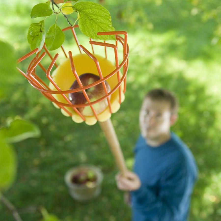 Tree Fruit Picker The Green Head