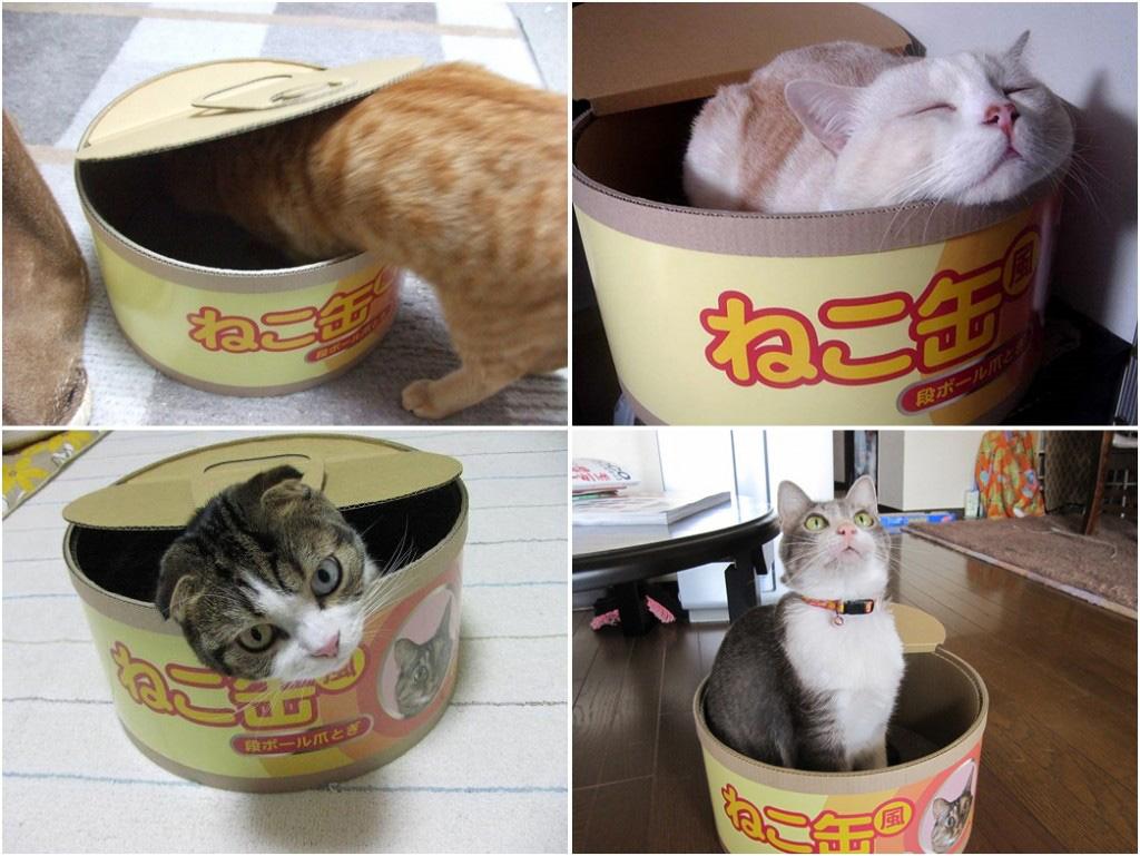 Tuna Can Cat Scratcher / Bed - The Green Head - photo#10