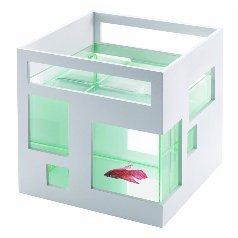 The gallery for modern fish tank for Modern fish tanks