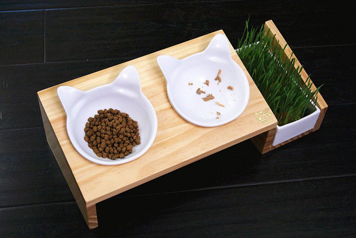 ViviPet Cat Dining Table The Green Head : vivipet cat dining table 2 from www.thegreenhead.com size 1200 x 803 jpeg 305kB