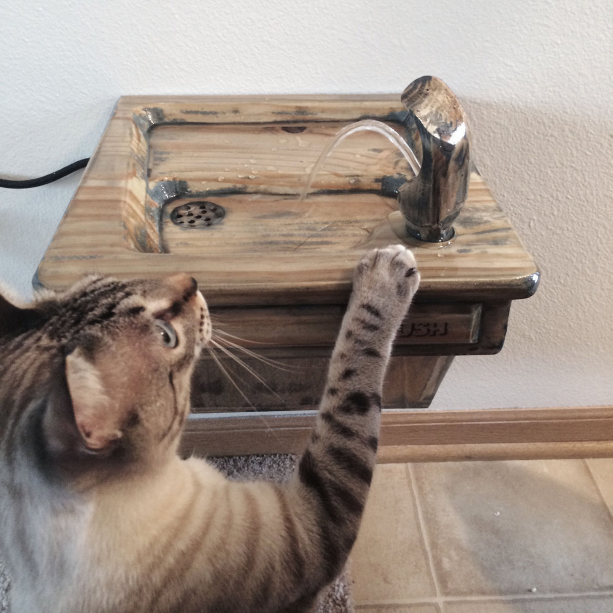 Wall Mounted Cat Drinking Fountain The Green Head
