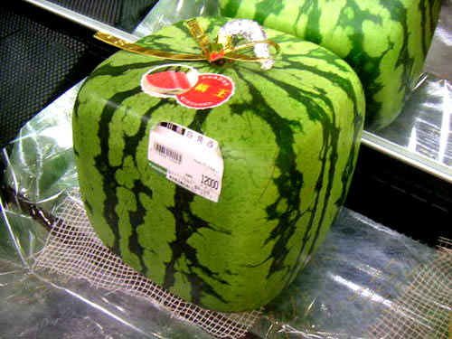 Well done, I bring you a watermelon