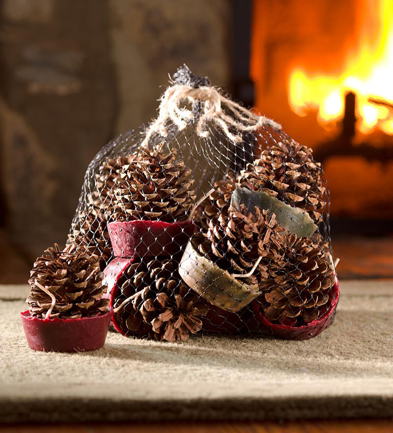 Wax-Bottom Pine Cone Fire Starters - The Green Head