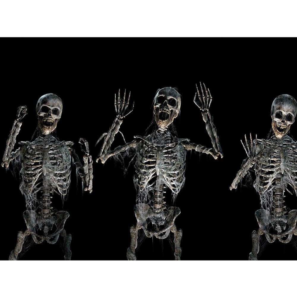 Halloween Window Projector