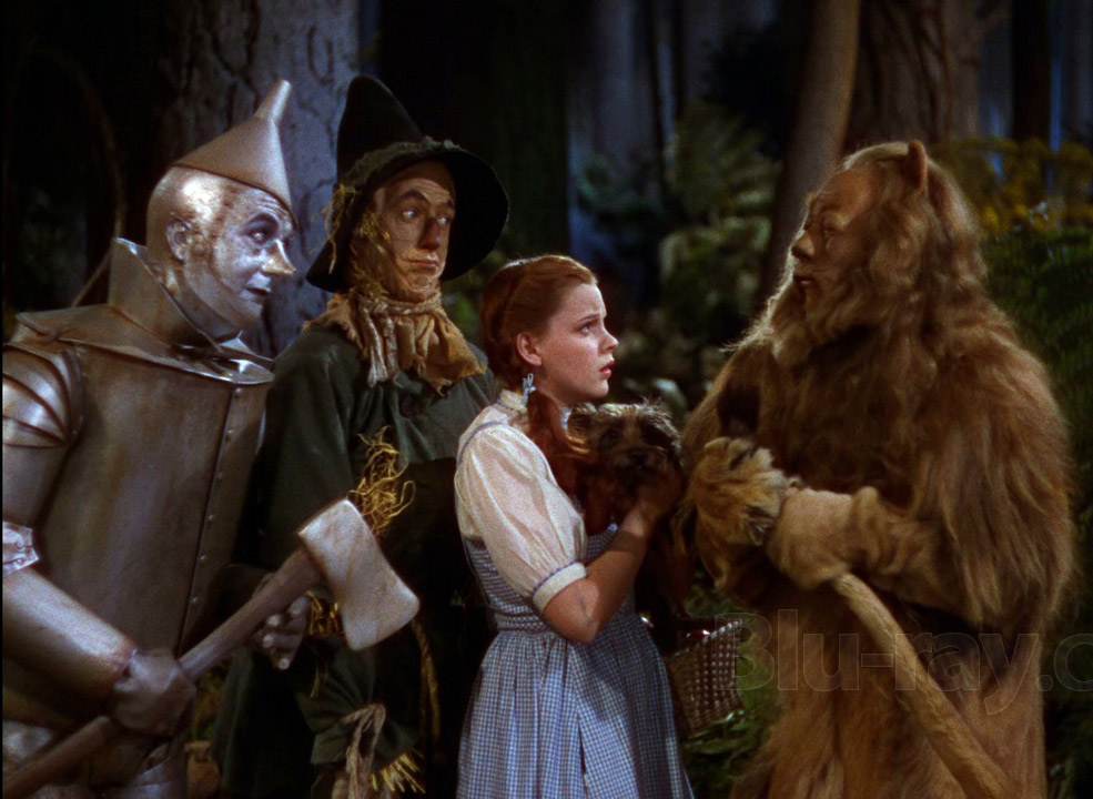 What makes the wizard of oz