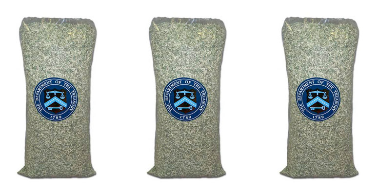 5lb Bag of Shredded U.S. Currency