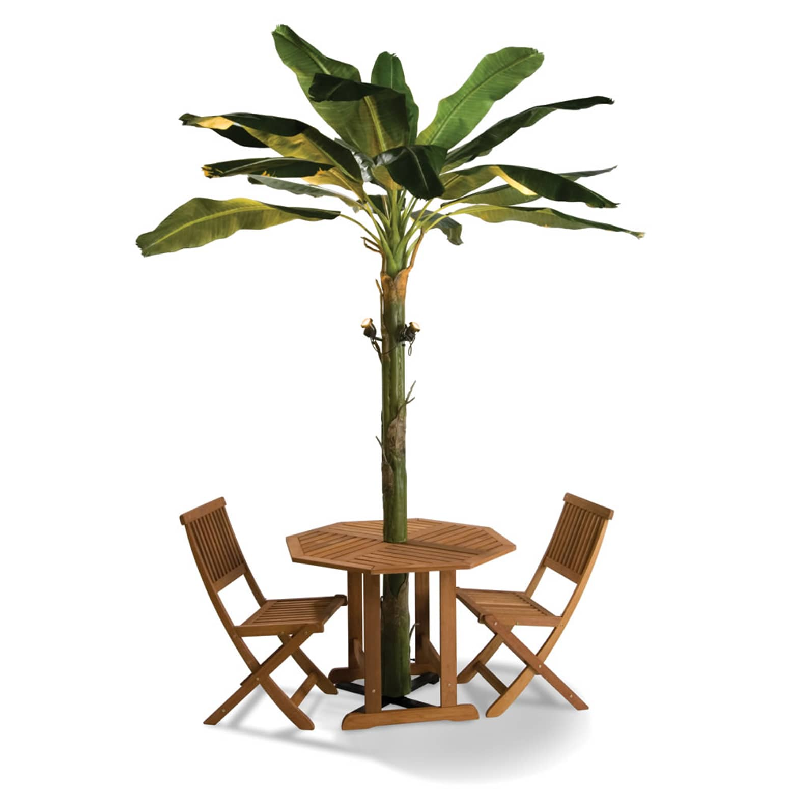 Banana Leaf Patio Umbrella Tree The Green Head