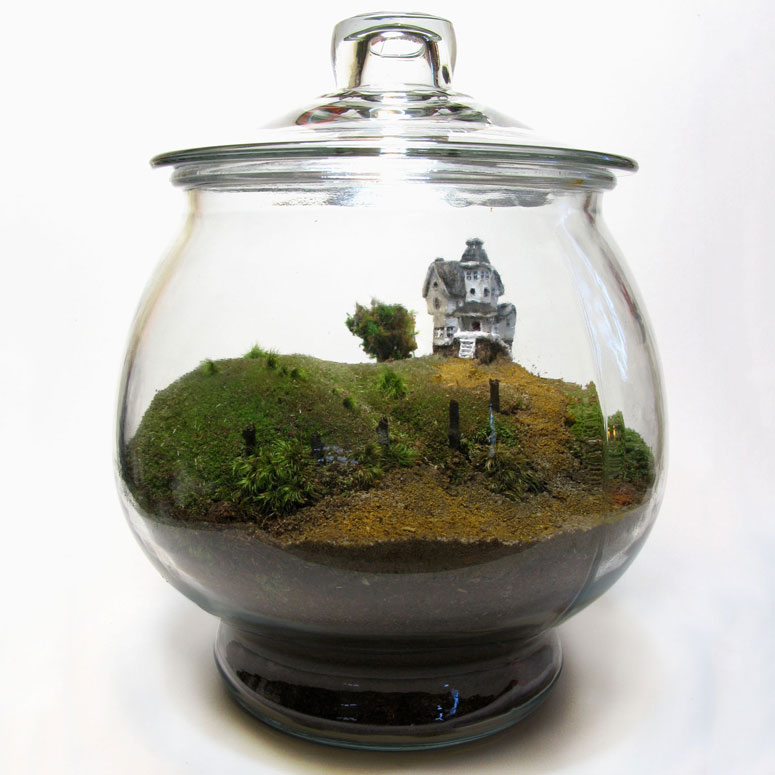 beetlejuice terrarium the green head. Black Bedroom Furniture Sets. Home Design Ideas