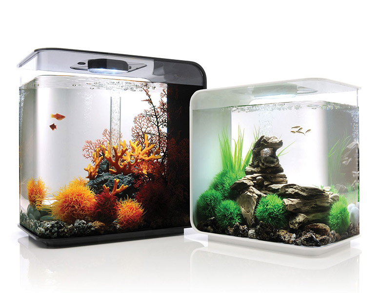 Biorb Flow Aquarium
