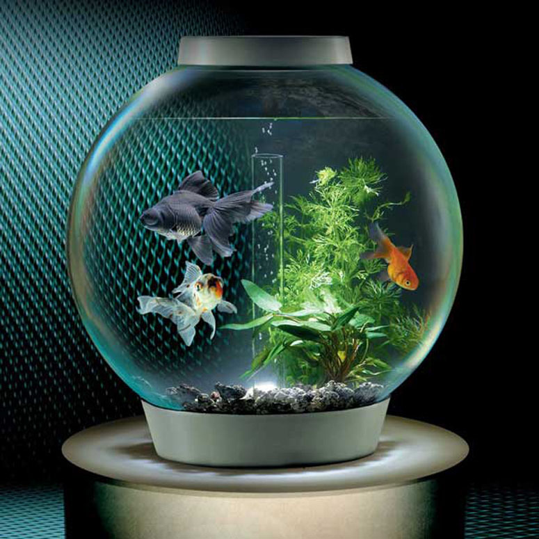 BiOrb Self-Filtering Aquarium