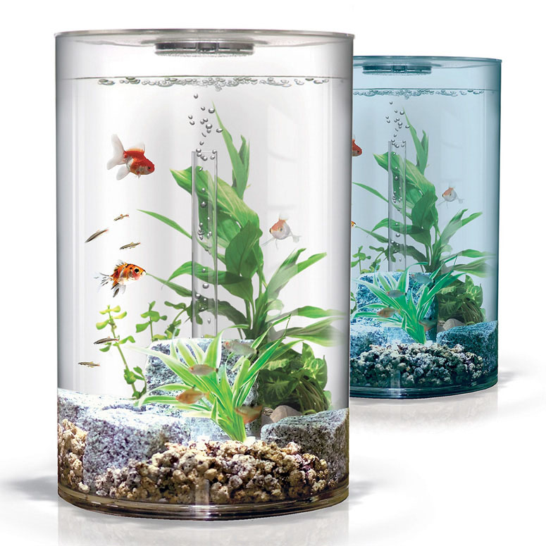 Biube pure aquarium the green head for Cool small fish tanks