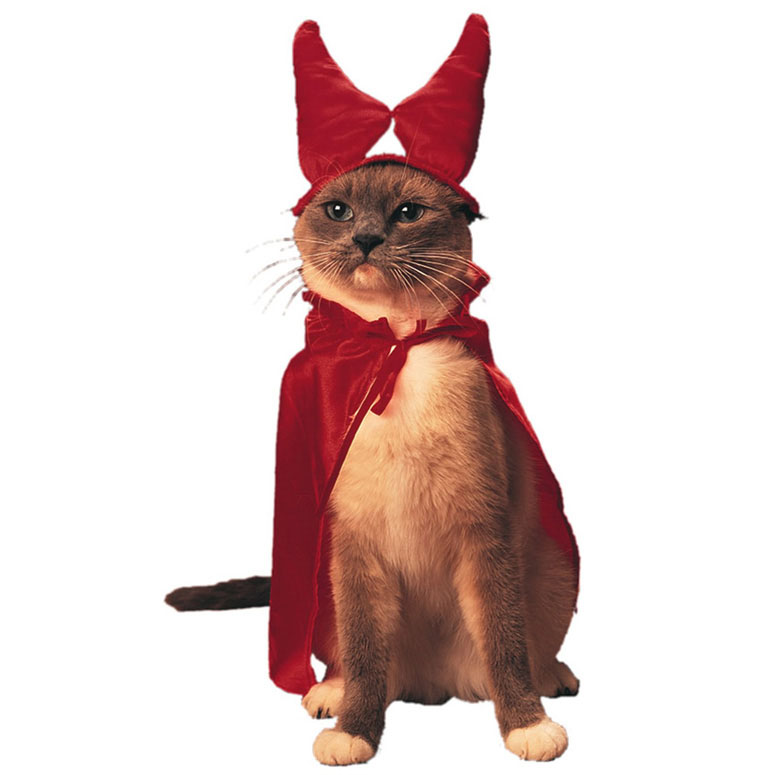 Cat From Hell - Pet Costume