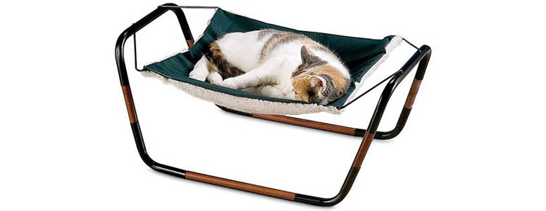 Medium image of cat hammock