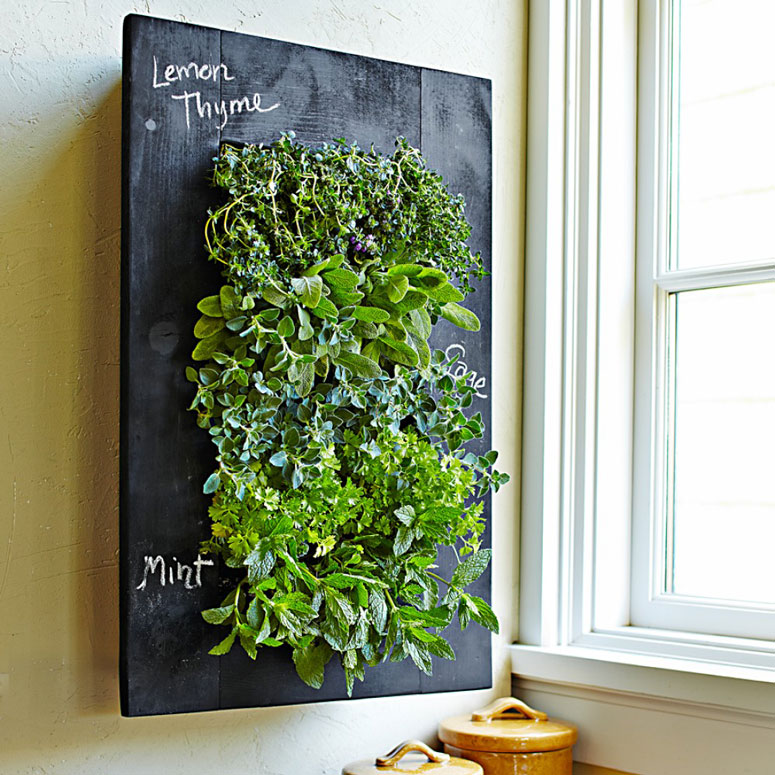 Kitchen Herb Garden Indoor: Chalkboard Vertical Wall Planter