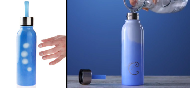Chameleon Bottle - Changes Color To Show How Much Water Is Left