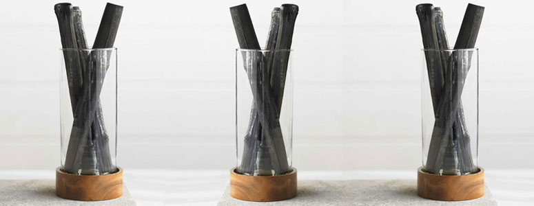 Charcoal Stick Purifiers In Vase