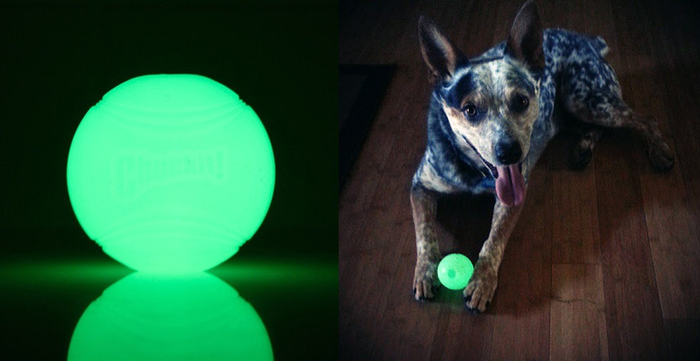 ChuckIt! Max Glow Ball Dog Toy
